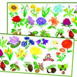 Цветы и орехи (в рулоне)
