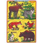 Животные наших лесов