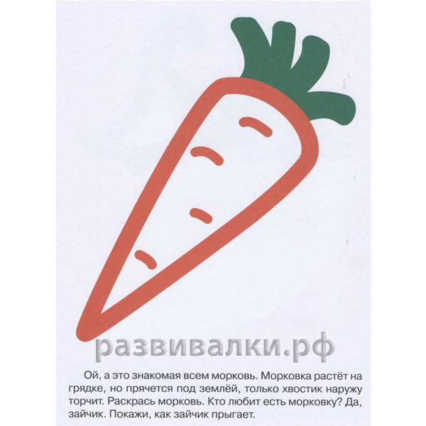 Фото 2 первые раскраски овощи