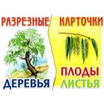 Разрезные карточки Деревья, плоды, листья